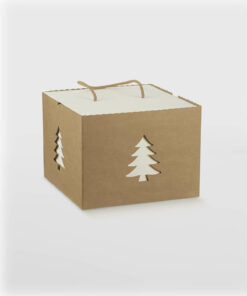 BXF37234-XMAS-BOX-WITH-CORD-HANDLE-KRAFT-WHITE